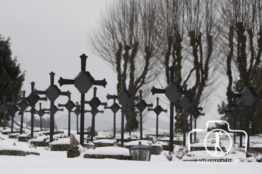 Friedhof-3