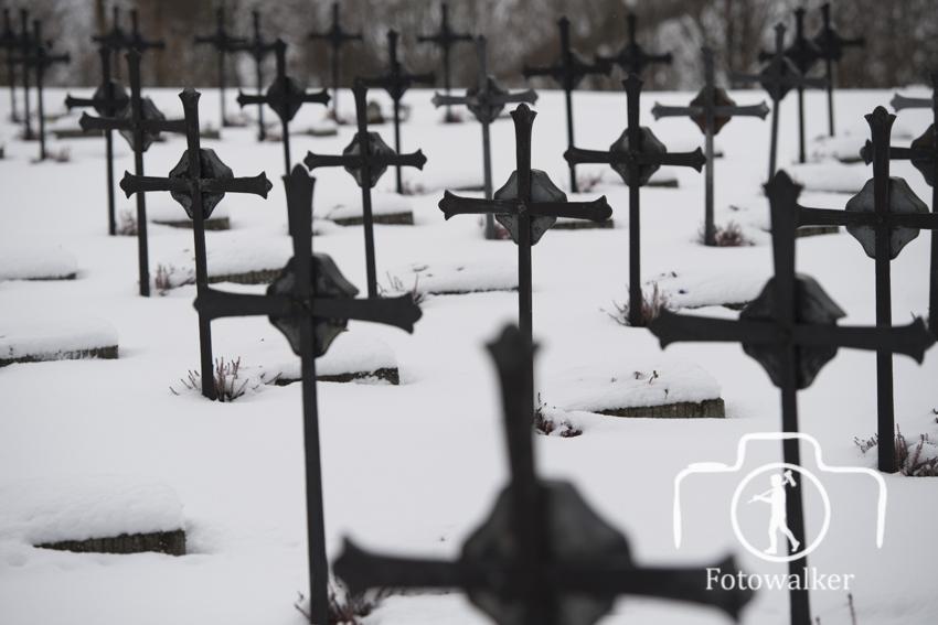 Friedhof-4