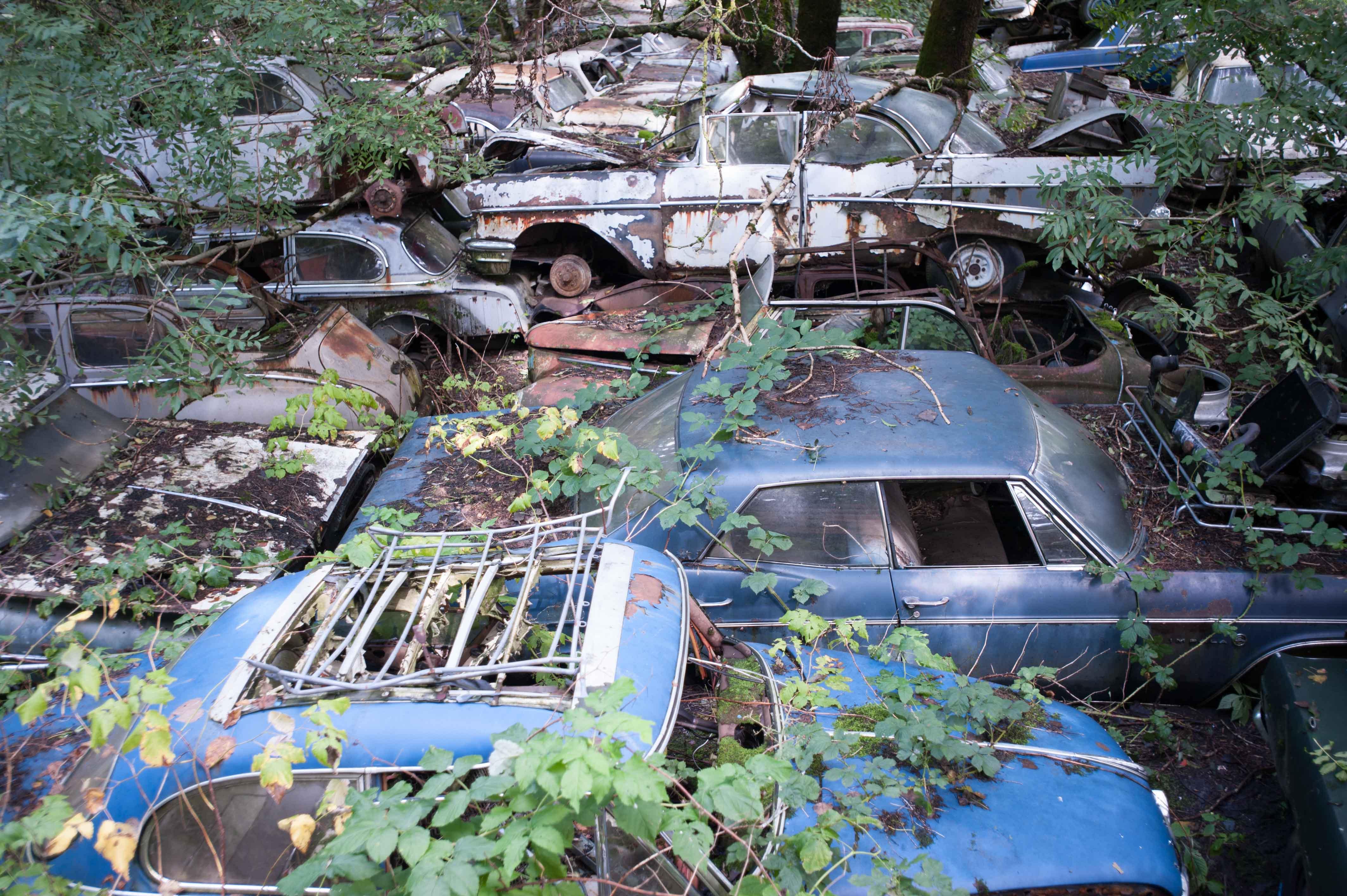 Autofriedhof-12