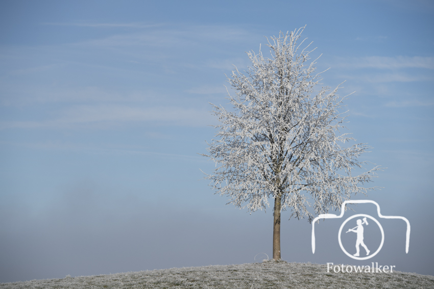 Nebel-5